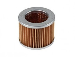 Filter for fuel pump 14976